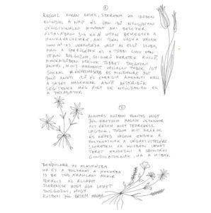 vitrin_maskepp_kiss_04