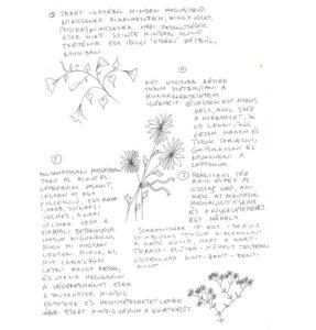 vitrin_maskepp_kiss_06